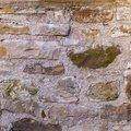 Wall Stone 088