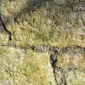 Wall Stone 099