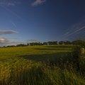 Agro Field 034