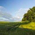 Agro Field 037