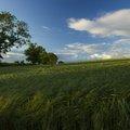 Agro Field 027