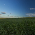 Agro Field 029