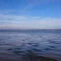 Sea Edge 023