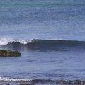 Sea Edge 041