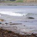 Sea Edge 043
