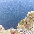 Sea Edge 050