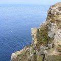 Sea Edge 051