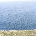 Sea Edge 055