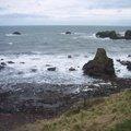 Sea Edge 058