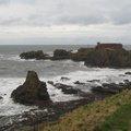 Sea Edge 060