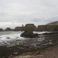 Sea Edge 065