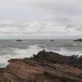 Sea Edge 068