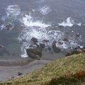 Sea Edge 080