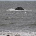 Sea Edge 104