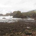 Sea Edge 109