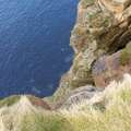 Rock Cliff 019