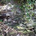 Rock Cliff 056