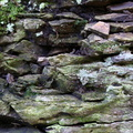 Rock Cliff 059
