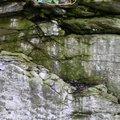 Rock Cliff 061