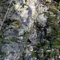 Rock Cliff 050
