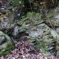 Rock Cliff 053