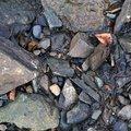 Ground Stones 032