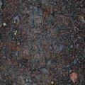 Soil Gravel 064