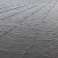 Water Sea 037
