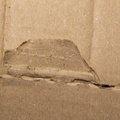 Paper Cardboard 009