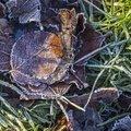 Ground Frozen 006