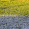 Ground Frozen 023
