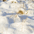 Ground Frozen 026