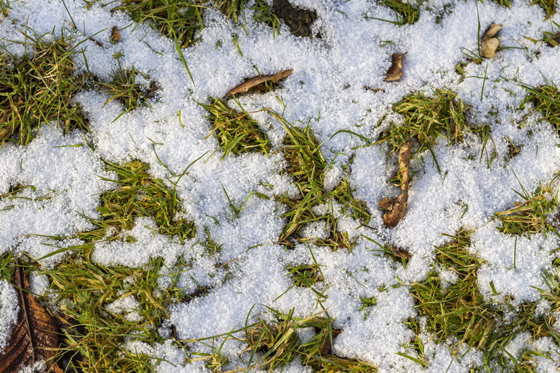 Ground_Frozen_028.jpg