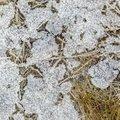 Ground Frozen 050