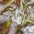 Ground Frozen 062
