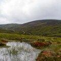 Nature Mountains 129