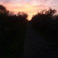 Sky Sunrise Sunset 018