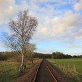 Railway Tracks 005