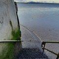Sea Edge 141