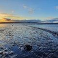 Sea Edge 143