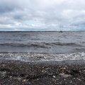Sea Edge 165