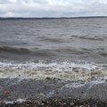 Sea Edge 166