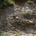 Rock Cliff 070