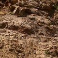 Rock Cliff 071