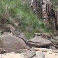Rock Cliff 079