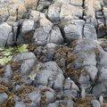 Rock Cliff 083