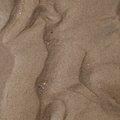Sea Sand 044