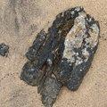 Sea Sand 048