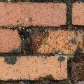 Bricks Damaged 017