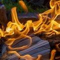 Fire 035